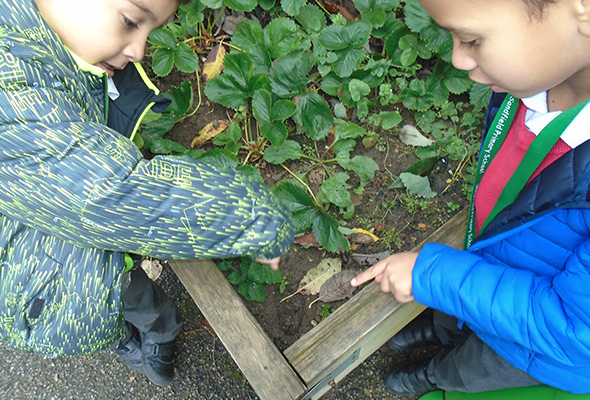 Discovering the outside world at Sandfield